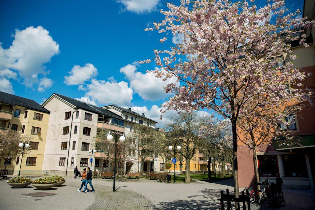 ann-sofi_rosenkvist-suburbs-4799